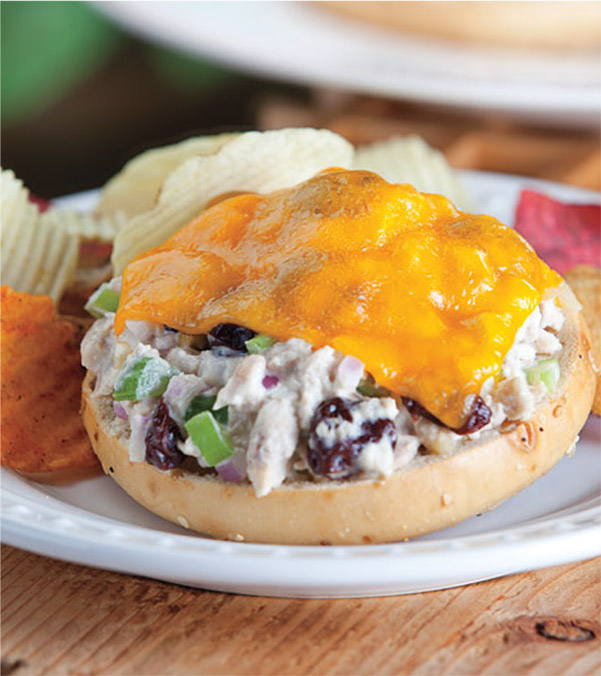Open-Faced Cheddar Tuna Melt